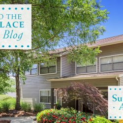 Summer Place Apartments Blog
