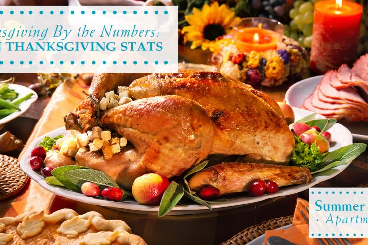 Thanksgiving By the Numbers: 10 Fun Thanksgiving Stats