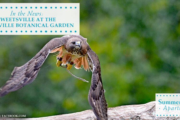 In the News: Tweetsville at the Huntsville Botanical Garden